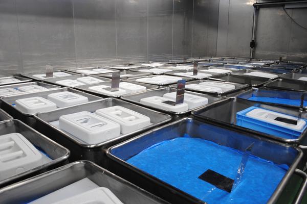 漬肉冷蔵室の写真